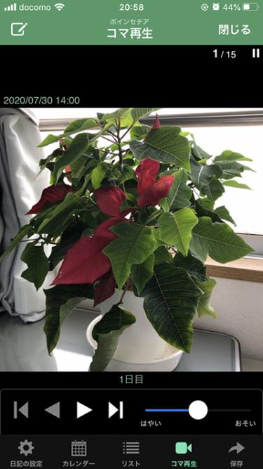 植物の成長を記録化。水やりや剪定・収穫まで管理するアプリ「GreenDiary」